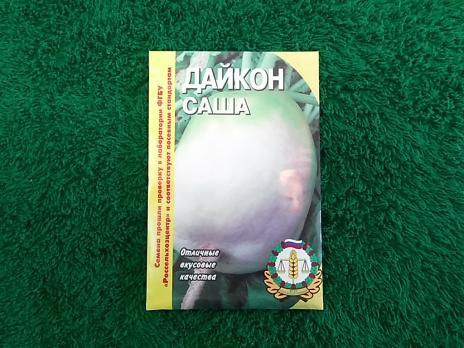 Дайкон Саша  3г